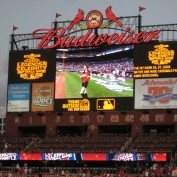 Annie Wersching on Busch Stadium jumbotron