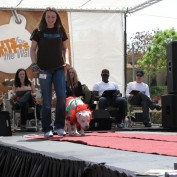 Annie Wersching at 2010 Nuts for Mutts