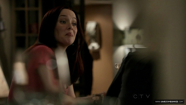 Annie Wersching in No Ordinary Family