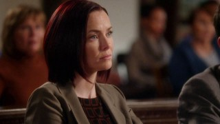 Annie Wersching Harry's Law