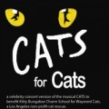 CATS for Cats charity benefit